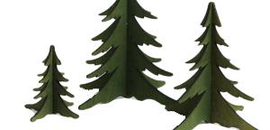 Bäume von KWO